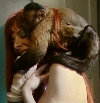 mylene-farmer-2009-monkey-004